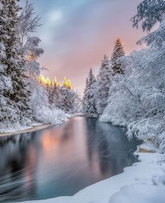Canon Photography, Winter Photography, Landscape Photography, Nature Photography, Photography Photos, Lifestyle Photography, Beautiful Winter Pictures, Winter Images, Pictures Of Winter