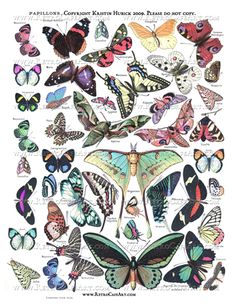 Papillons Butterfly Collage Sheet
