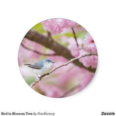 Bird in Blossom Tree Classic Round Sticker