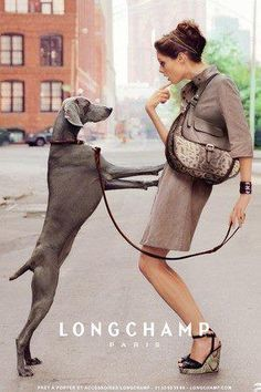 Advertising Longchamp purses using a dog jumping on someone very fitting for Manning Longchamps