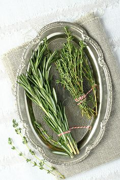 Fresh aromatic herbs rosemary and thyme