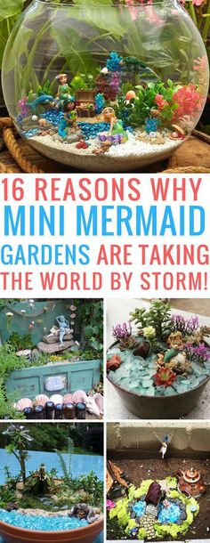 Totally in love with these miniature mermaid gardens! Thanks for the inspiration. Totally in love with these miniature mermaid gardens! Thanks for the inspiration… Totally in love with these miniature mermaid gardens! Thanks for the inspiration! Mini Fairy Garden, Fairy Garden Houses, Garden Art, Fairy Gardening, Fairies Garden, Garden Design, Flowers Garden, Succulents Garden, Garden Pond