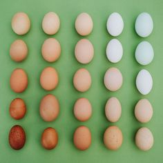Emily Blincoe creates beautiful photos of everyday objects and food based on size, shape and color. Check out her photos of everyday objects arrangements. Fresh Chicken, Chicken Eggs, People With Ocd, Foto Still, Vida Natural, Recipe Organization, Healthy Soup Recipes, Photo Series, Everyday Objects