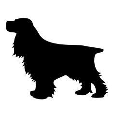 LOL! Temporary tattoos of your dog. Fab.com | Cocker Spaniel Tattoos