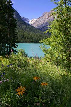 Emerald Lake, Yoho National Park, British Columbia, Canada, by Carl Main Yoho National Park, National Parks, Emerald Lake, Wide World, Beautiful Places To Travel, Nature Photos, Beautiful Landscapes, Mother Nature, Wilderness