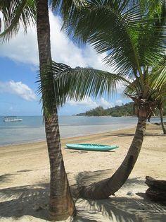 Sandy Bay, Honduras, Sun Dancer Tree Top Cottage