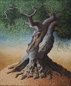 Il mondo di Mary Antony: Gli alberi d'ulivo di Miriam Escofet
