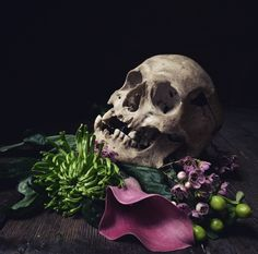 Screaming Skull, Skulls, Bones, Instagram Posts, Lab, Flowers, Beautiful, Colors, Florals