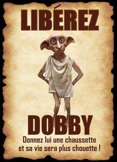 affiche dobby