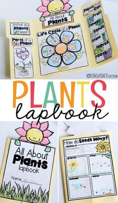 Interactive Lapbooks for the School Year - Mrs. Jones Creation Station