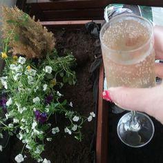 KOTI&SISUSTUS. KIPPIS... Lasillinen kylmää  Shampanjaa PUUTARHA, parvekkeelle...IHANAA 💓⏰🌼KESÄ on alkanut...Aurinkoa ja Lämpimiä ilmoja, KIITOS. VIIHDYn&Nautin ulkosalla. SUOSITTELEN. HYMY  #elämäntapa #blogi #koti #sisustus #puutarha #parveke #kesä #juomat #sisustusblogi #shampanja #hetki #ihana 🌞⏰🔑😻👣💓🌼☺😉📷👌🙋