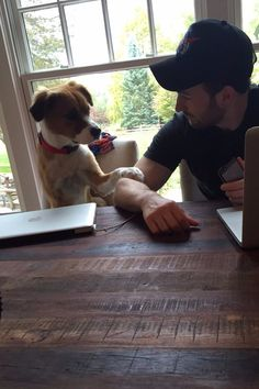 Chris Evans's Love For His Dog, Dodger, Will Make Your Heart Grow 2 Sizes