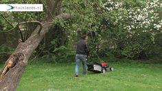 Hoe en wanneer grasmaaien? - Tuinieren.nl