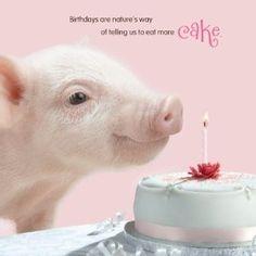 birthday+greetings+with+pig+animals | Pig Birthday Card
