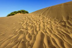Las Dunas (Bani Sand dunes).