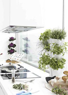 Jardin Vertical | Huerto Urbano Vertical | Minigarden