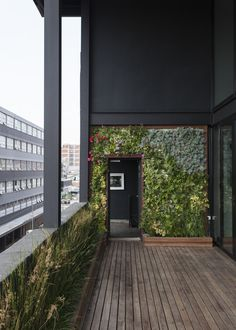 love this Living Green facade/wall ... DAVID ROSS