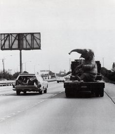 The Jungle Cruise, a rare photo transporting a 1962 animatronic elephant on the freeway between Disney's Burbank studios and Disneyland