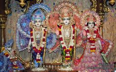 To view Sita Rama Laxman Hanuman Wallpaper of ISKCON Dellhi in difference sizes visit - http://harekrishnawallpapers.com/sri-sri-sita-rama-laxman-hanuman-iskcon-delhi-wallpaper-018/