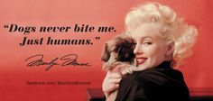 Twitter / MarilynMonroe: Dogs never bite me. Just ...