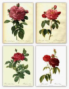 Por si queréis enmarcar unos cuadros, os dejo estas cuatro láminas    http://magicmoonlightfreeimages.blogspot.com.es/2012/04/collage-image-...