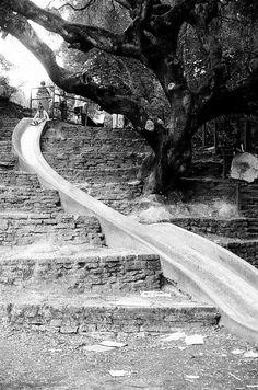 Tilden Park Slide, Berkeley California