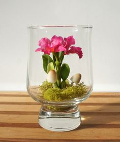Tiny Pink Cattleya Orchid Terrarium in Recycled by MissMossGifts, $24.00 #handmade #etsy