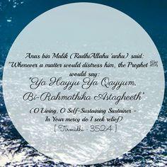 Hadith, islam