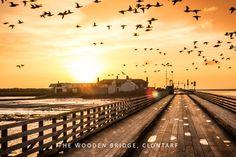 Wooden Bridge Landscape Photos, Landscape Photography, Irish Greetings, Places Ive Been, Bridge, Greeting Cards, Prints, Scenery Photography, Bro