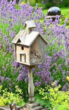 Such a Pretty Setting for a Lovely Birdhouse~❥