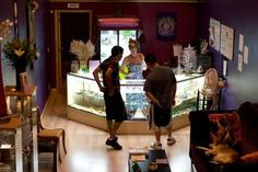 Operating a Medical Marijuana Dispensary: It Takes a Special Type