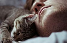 The Three Main Reasons Your Cat Loves To Sleep In Bed With You!
