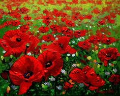 Field of Poppies, Tuscany by  Schaefer/Miles