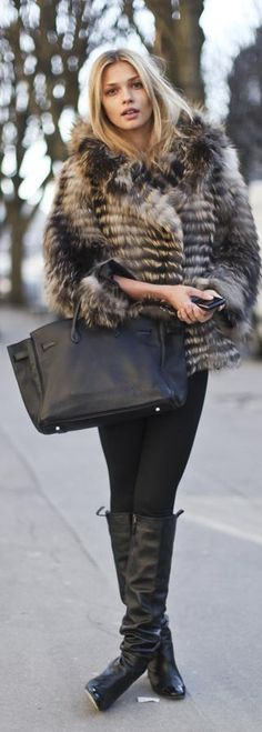 Fabulous Fur