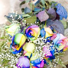 Rainbow roses, mountaintop ceremony, and pure bliss surround Michael and Sheena on their gorgeous wedding day!