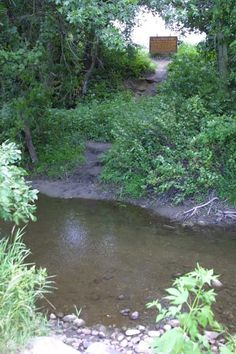 On the banks of Plum Creek, where Laura Ingalls Wilder lived with her family.