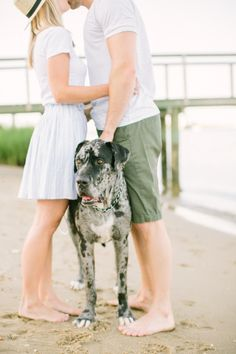 10 Pups That Stole The Engagement Show: http://www.stylemepretty.com/collection/3351/