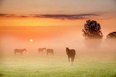 Sunrise in the Netherlands.