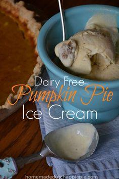 Dairy Free Pumpkin Pie Ice Cream   Homemade Dutch Apple Pie