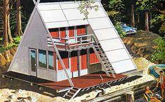 700 sq ft triangle mid-century cabin