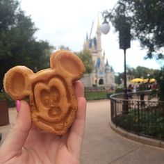 Vegan-Friendly Options at the Happiest Place on Earth