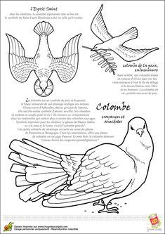 110 meilleures images du tableau coloriages d 39 oiseaux bird coloring pages coloring pages et - Colombe a colorier ...