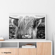 Print nº 656 : Highlands Cow Photography  - - - - - - - - - - - - - - - - - - - - - - - - - - - - - - - - [Take a look to our Animal Photo section] https://www.etsy.com/shop/BeguimaStudio?ref=seller-platform-mcnav&section_id=20464664  - - - - - - - - - - - - - - - - - - - - - - - - - - - - - - - - INCLUDED FILES: 5 JPGs - Ready to Print - High Res 300dpi - CMYK  ► International Paper Size for printing up to A2 Can be adjusted to A3, A4...5x7, 10x14...  ► 2:3 ...