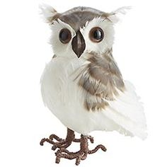 can't wait to get my cute little owls out for our tree this year!  Hopefully Molly will not eat anymore of them lol