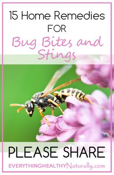 Gonna need this in Florida-15 Home Remedies for Bug Bites and Stings