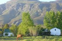 Top 10 Things to do in Greyton – South Africa's Little England. Little England, Places To Travel, Places To Visit, Sense Of Place, My Land, Family Adventure, Nature Reserve, Live, South Africa
