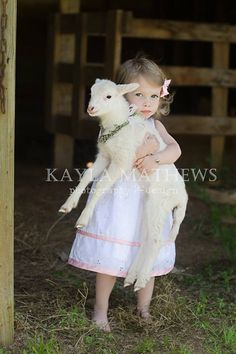 Easter/Spring mini photography sessions with lambs Www.kaylamathews.com
