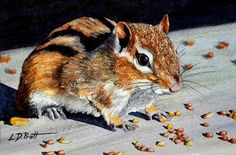 chipmunk watercolor painting by Lynn D. Pratt