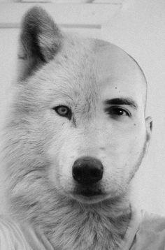 Sympathiek. Wolf in schaapskleren.