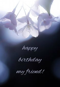 Happy Birthday my friend! Click on the image to see the biggest selection of birthday wishes on the net!